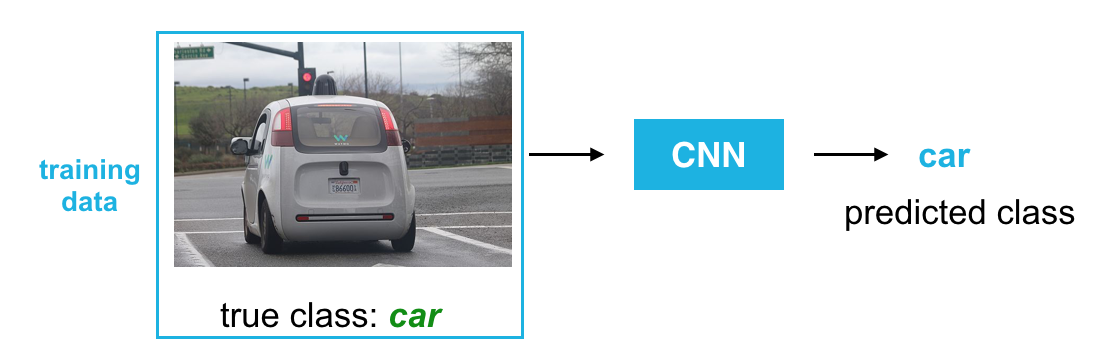 True and predicted class labels for a car image.